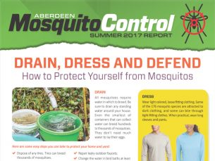 mosquito-newsletter1